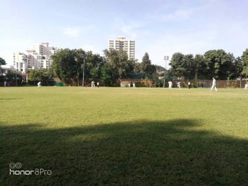 cricketteam_2019_4